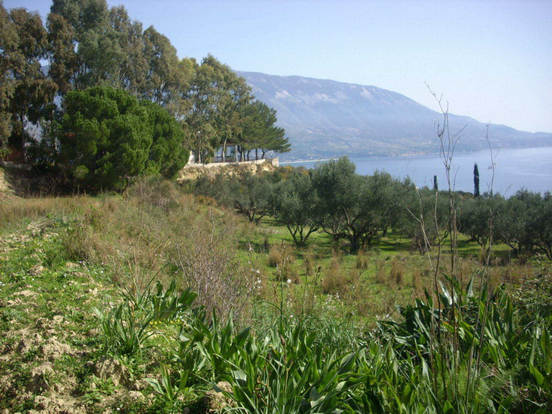Property For Sale Near The Beach Of Spartia