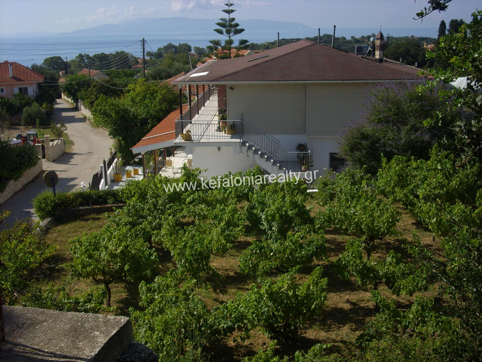 Plot With Vineyard For Sale In Spartia