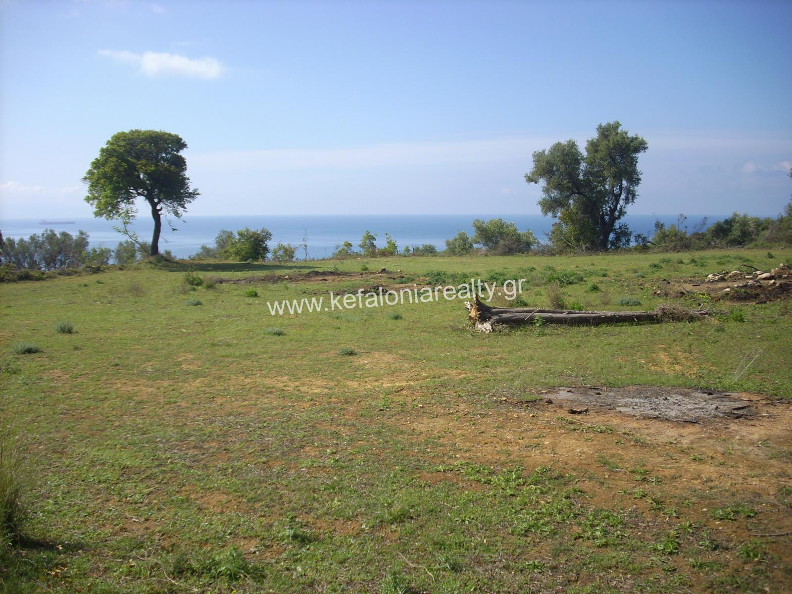 Land For Sale In Pessada Village